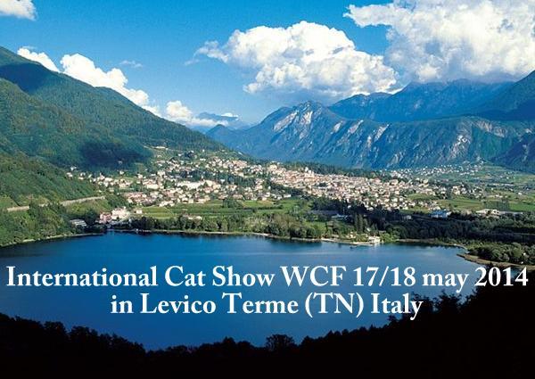 Esposizione internazionale felina Levico Terme (TN) 17,18-05-2014