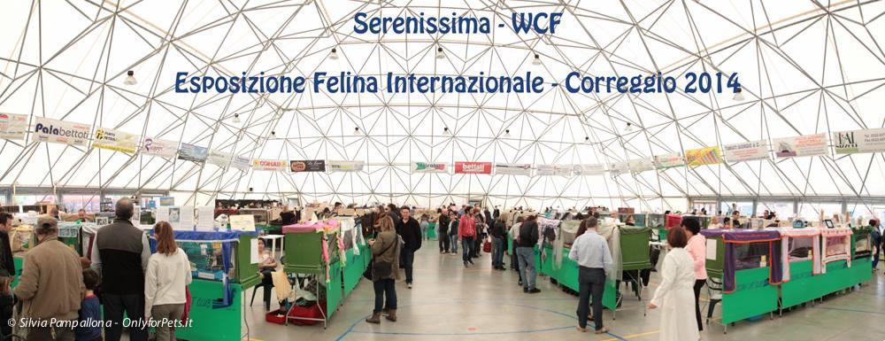 Esposizione Internazionale Correggio (RE) 12,13-04-2014